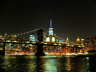ニューヨーク ディナークルーズ - スカイライン