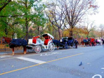 ニューヨーク・セントラルパークを馬車で周遊