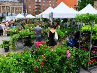 ニューヨーク マーケット - ユニオンスクエアで売られる鉢植え