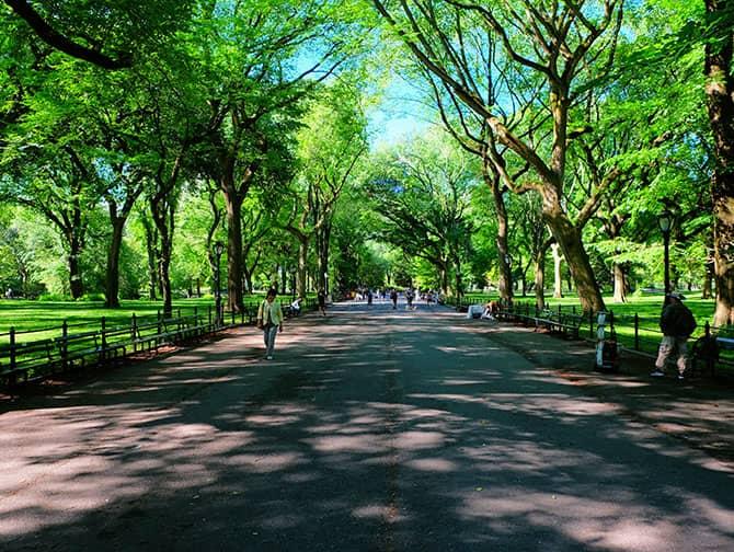ニューヨーク レイバーデー - セントラルパークを散策