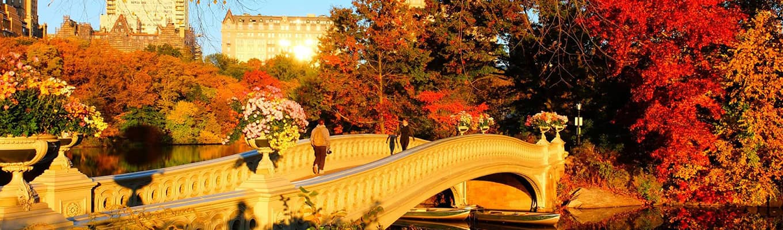 秋のセントラルパーク