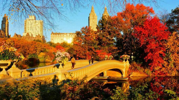 秋のセントラルパーク – Zoom