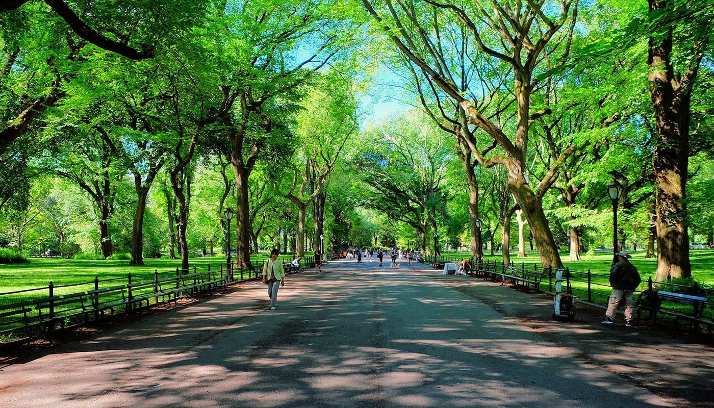 ニューヨーク 母の日 - セントラルパークのザ・モール