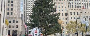 エリックブログ - ロックフェラー クリスマスツリー