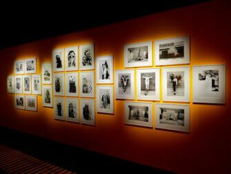 ニューヨークのフォトグラフィスカ - コンピレーションアート