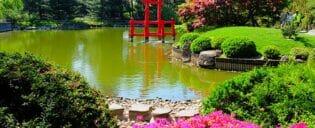 ニューヨークの植物園