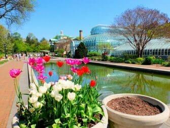 ニューヨークの植物園 - ブルックリン植物園