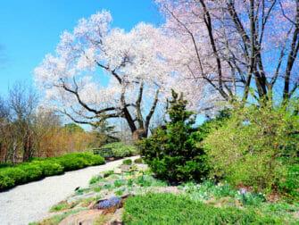 ニューヨークの植物園 - ブロンクスのニューヨーク植物園