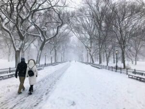 ニューヨークの雪