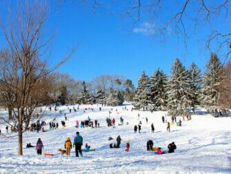 ニューヨークの雪 - セントラルパーク